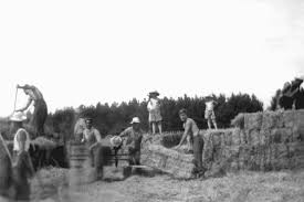 1940s Farming